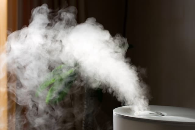 Guide d'achat humidificateur