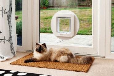 La meilleure chatière électronique en 2019 – Comparatif, guide et avis 9