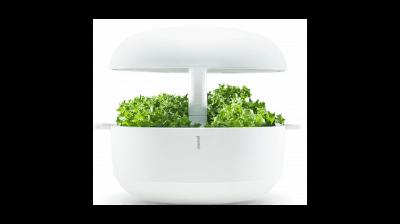 Jardin d'intérieur Plantui 6 Smart Garden