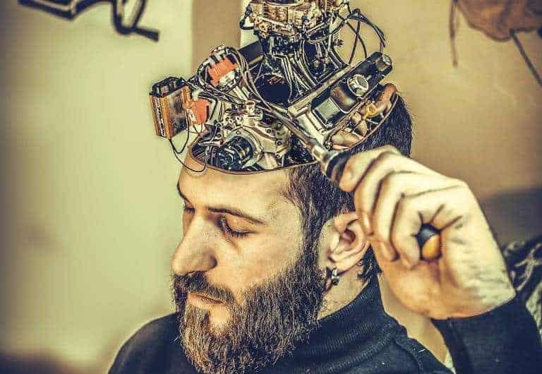 Quel est le meilleur livre sur le cerveau humain en 2019 ?