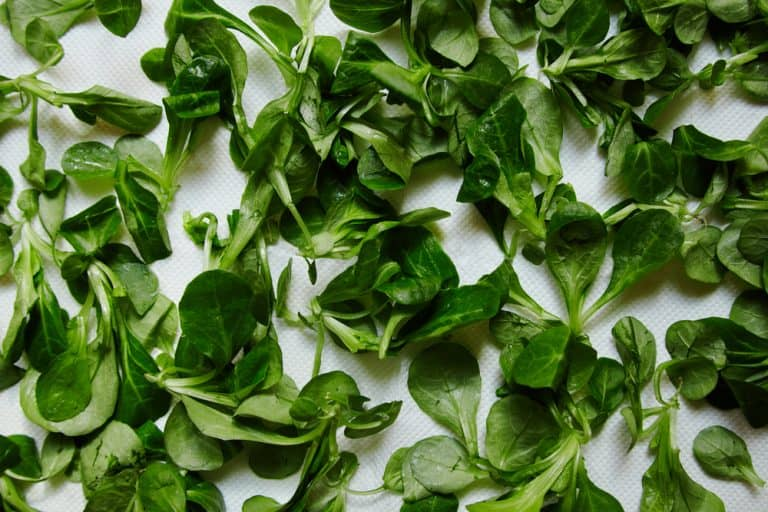 salade cresson