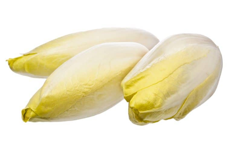 salade endive